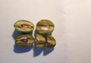 Druga zaštita masline od maslinovog moljca